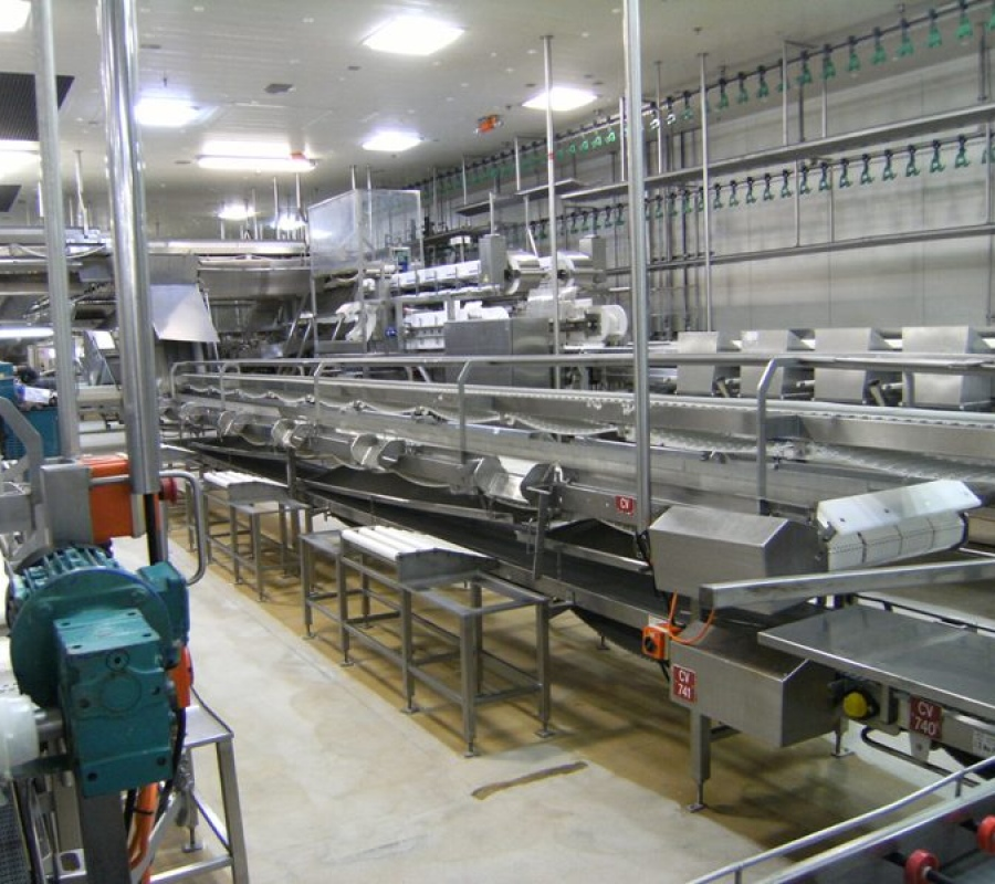 Food Processing - Poultry