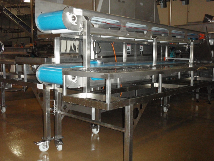 Whole Bird Injector Conveyors